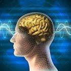 """""""Travmatik beyin hasarı öğrenme becerisini engelliyor"""""""
