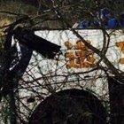 Çin'de otobüs uçuruma yuvarlandı: 20 ölü