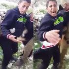İsrailli askerler köpeklerini Filistinli gence saldırttı!