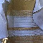 Dünyayı ikiye bölen elbise hakkında yeni iddia!