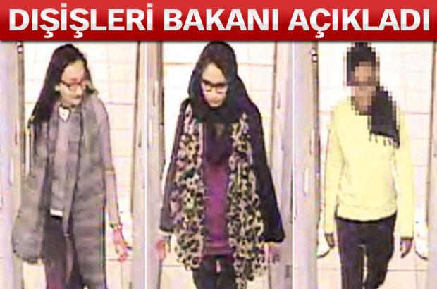Dışişleri Bakanı Mevlüt Çavuşoğlu, Musul'da IŞİD'e karşı yapılması planlanan operasyona ilişkin olarak, Türkiye'nin