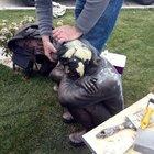 Berkin Elvan heykeli onarıldı