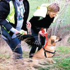 Emma Graham Harrison köpeği bulununca Paris'e döndü