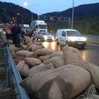 Fındık kamyonu devrildi 1 kişi yaralandı 8.5 ton fındık yola saçıldı