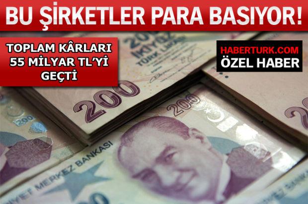 Günde 10 milyon TL kâr eden Türk şirketi!