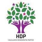 HDP'de milletvekili olan 15 isim YSK'ya sunulan listede yok