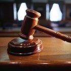 Ceyda Karan ve Hikmet Çetinkaya'ya 4,5 yıla kadar hapis istemi