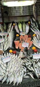 Hangi balık, ne zaman, nasıl yapılır?