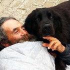 Bodrum'da köpek Yaren yaralanan sahibini yalnız bırakmadı