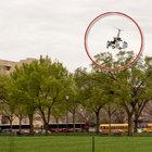 ABD Kongresi'nin bahçesine helikopter indi, polis alarma geçti!