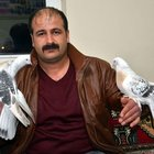 Tokat'ta bir çift güvercin 19 bin TL'den satıldı