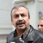 Sırrı Süreyya Önder: HDP seçimde en az yüzde 14 oy alır