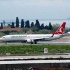 Atatürk Havalimanı'nda köpekler piste çıktı
