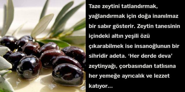 Zeytin yağı hakkında bilinmesi gerekenleri Emine Yücekök anlattı