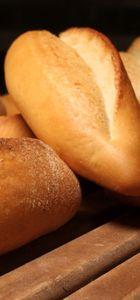 Ekmek gerçekten aslanın ağzında!