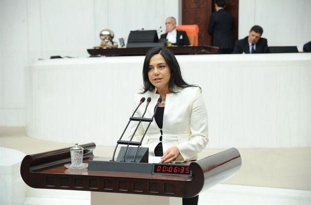 'Kadına şiddet' raporuna CHP'den itiraz