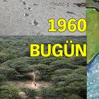 Hintli Jadav Molai Payeng tek başına bir orman inşa etti!