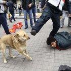 Polis Taksim meydanında köpek tekmeledi