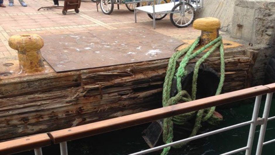 Kabataş-Kadıköy-Adalar Eminkul vapuru koç boynuzu koptu