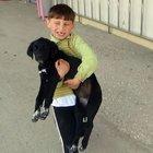Minik Ömer Faruk köpeği acil servise götürdü