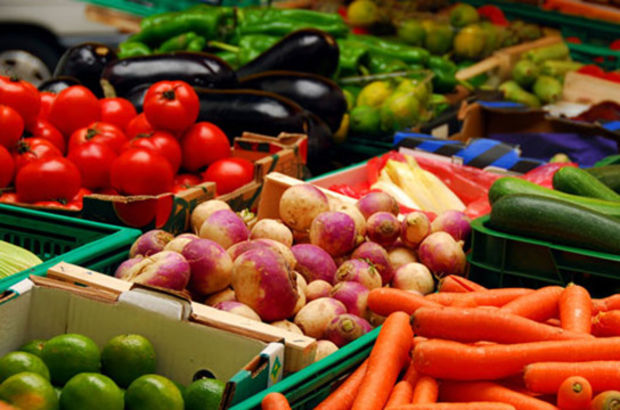 Sebze meyve fiyatları Haberleri, Güncel Sebze meyve fiyatları haberleri ve Sebze meyve fiyatları gelişmeleri 16