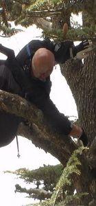 Üzerine düştüğü ağaç paraşütçünün hayatını kurtardı