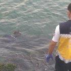 Avcılar'da denize düşen genç hayatını kaybetti