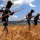 Bakan Mehdi Eker'den çiftçilere müjde