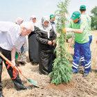 Şehit Savcı Kiraz anısına hatıra ormanı oluşturuldu