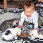 """""""Kedi yavruları, 10 aylık oğlumdan daha şanslı çıktı"""""""