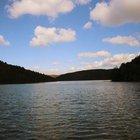 'Barajlar doldu, su sıkıntısı olmayacak'