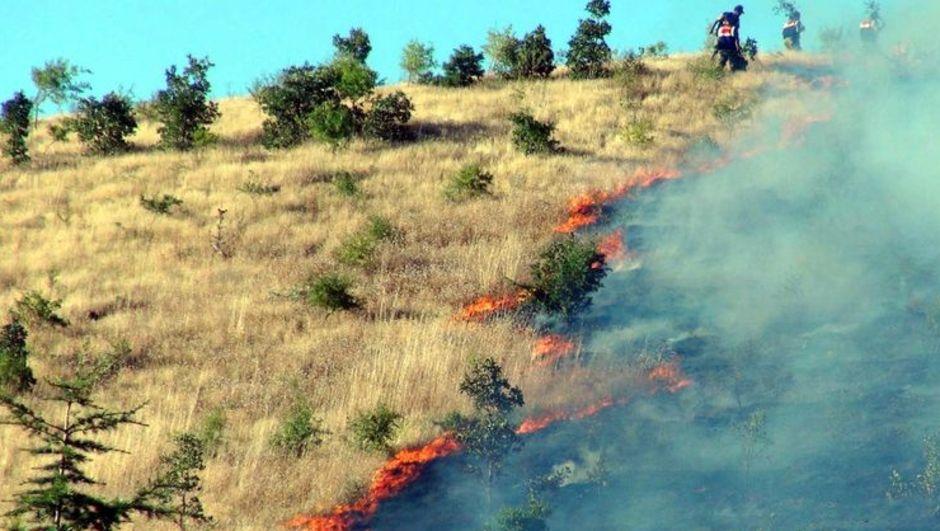 Elazığ Hazar Gölü yangın asker tatil sitesi
