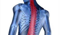 Doç. Dr. Çağatay Öztürk, yüzmenin omurga sağlığı üzerindeki yararlarını anlattı