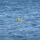 Deniz simidiyle bir kilometre açığa sürüklenen bebek kurtarıldı