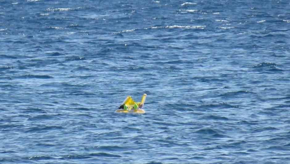 çanakkale ayvacık deniz simidi bebek