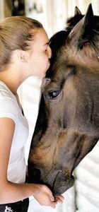 Rüzgârın Kızı Şevval Balkan Şampiyonası'na katılmak istiyor ama atı sakat