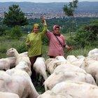 Bursa'da iki kız kardeşin azmi