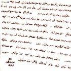 Sultan Abdülhamid'e sunulan asparagas kehanetler!