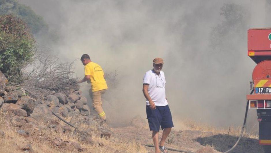 çanakkale,orman yangını,bektaş köyü,