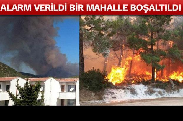 Mersin'deki orman yangını kısmen kontrol altına alındı
