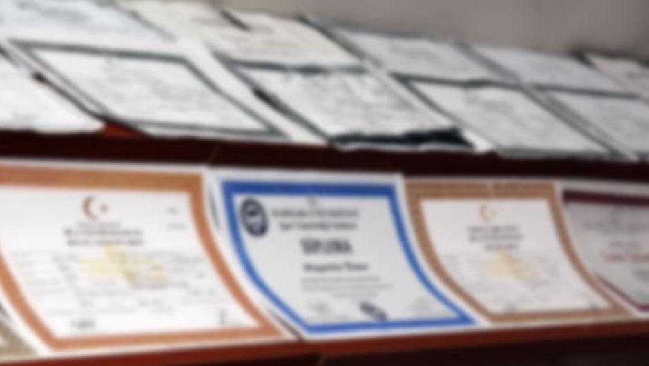 YÖK, sahte diploma, Diploma Sorgulama Sistemi