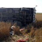 Tarım işçilerini taşıyan midibüs devrildi: 3 ölü, 30 yaralı