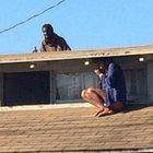 Kadın korkudan çatıya sığındı ve...
