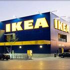 Dünya devi IKEA Romanya'da orman satın aldı