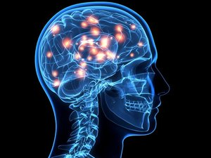 Sağlıklı Beyin İçin Yirmi Öğüt