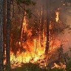 Karabük'teki orman yangını kısmen kontrol altına alırken çalışmalar sürüyor