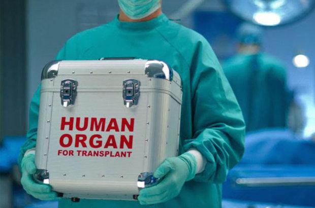 Organ nakli cilt kanserine yol açabilir
