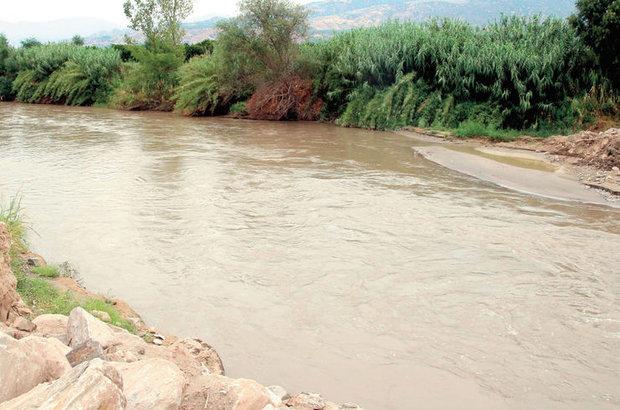 Büyük Menderes nehri endüstriyel atıklar nedeniyle zehirli