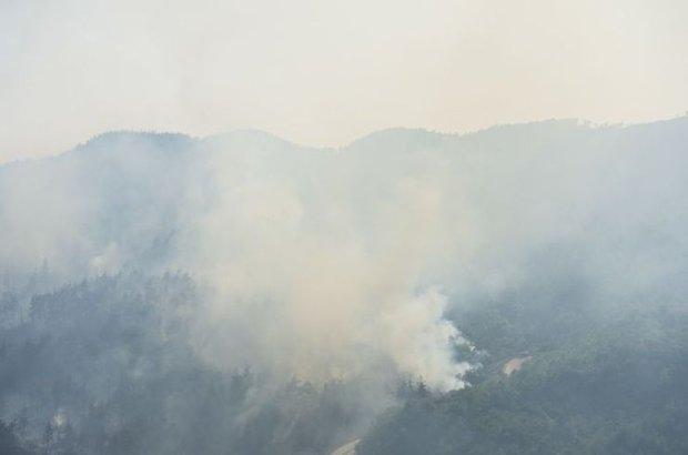 Yangın, Bayırbucak Türkmen bölgesi, Suriye, Türkiye