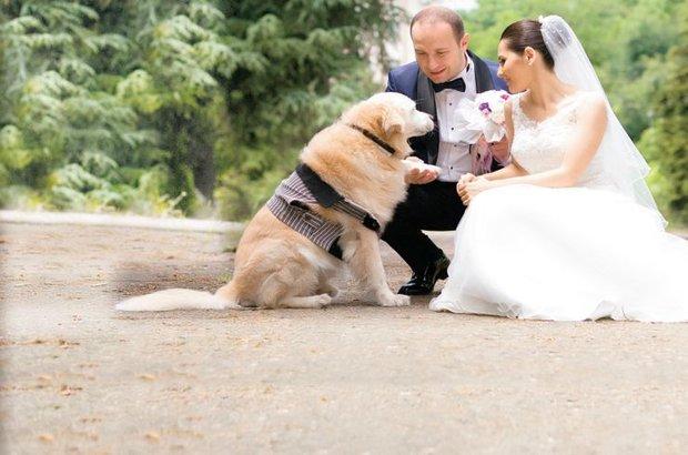 4 ayda 15 düğün, 12 ton mama